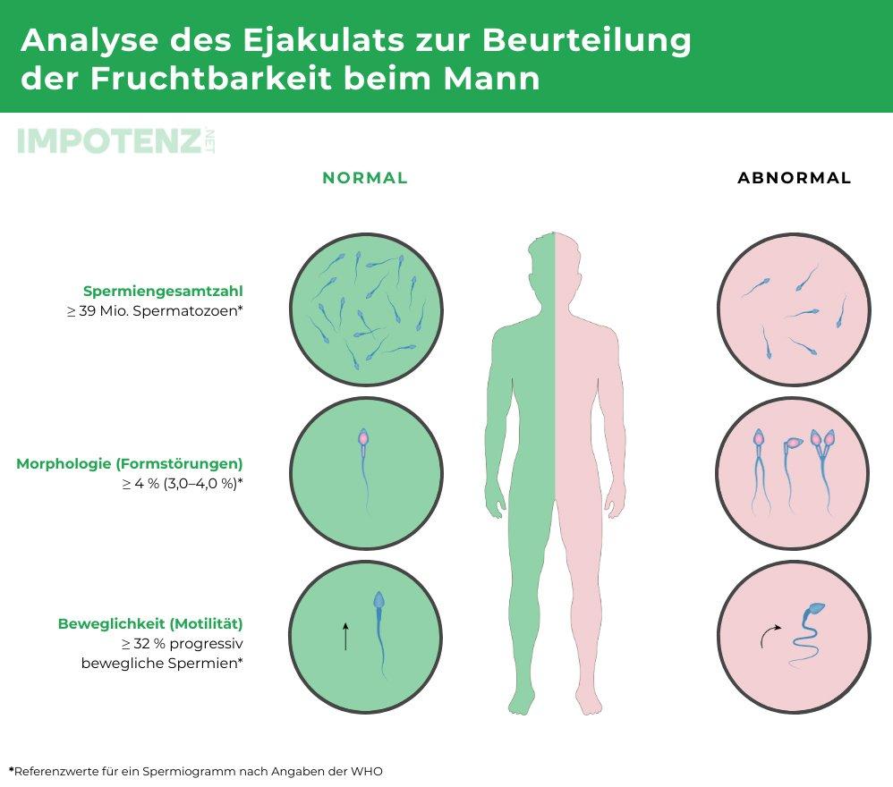 unfruchtbarkeit-des-mannes-impotenz